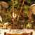 Rainforest Cafe banner image - MICE UK