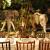 Rainforest Cafe image 4 - MICE UK