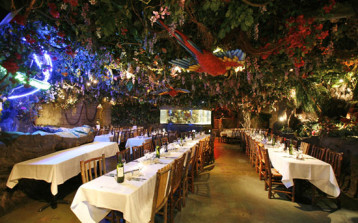 Rainforest Cafe main image - MICE UK