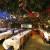 Rainforest Cafe image 5 - MICE UK